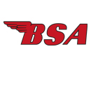 Download BSA Logo Vector